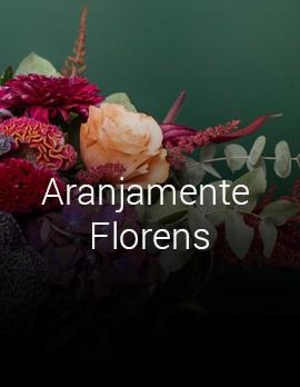 Comanda-Online-Aranjamente-Florale-Floraria-Florens